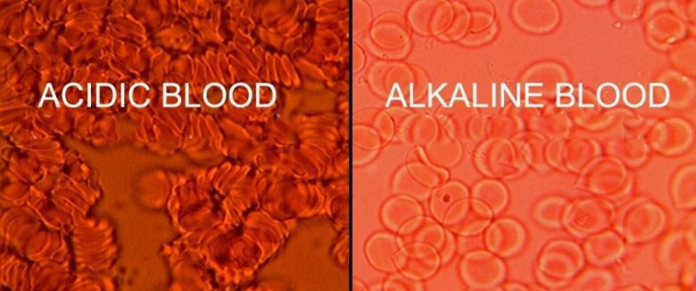 pH Acid Alkaline Blood
